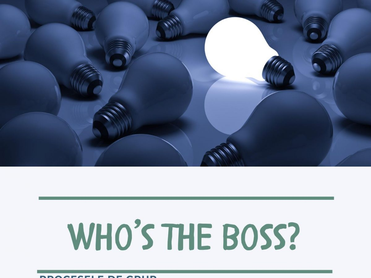 Webinar – Who's the boss? (8 aprilie)