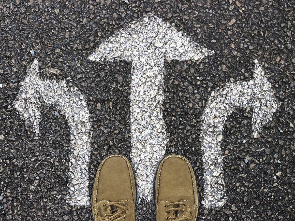 Factori de decizie